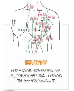 7月10日广州番禺催乳师培训体验课免费报名-缺乳怎么办