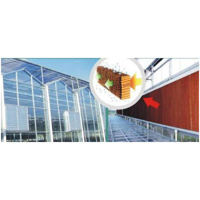 温室大棚风机湿帘降温系统 山东一道农业科技有限公司