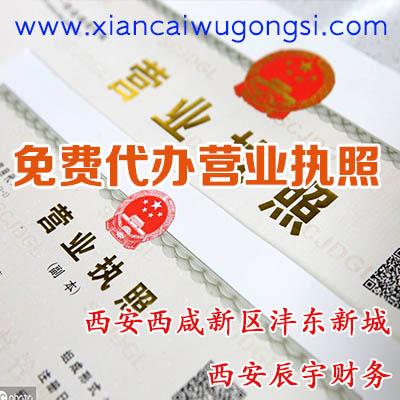 西安西咸新区沣东新城代办营业执照