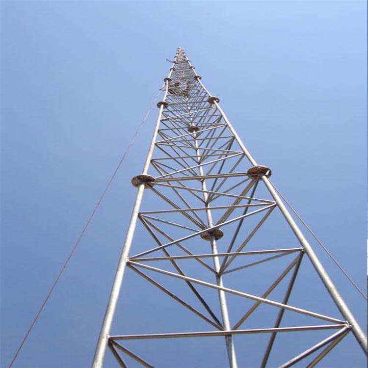 厂家供应15-30米避雷塔铁塔 避雷针塔 欢迎来电咨询图片