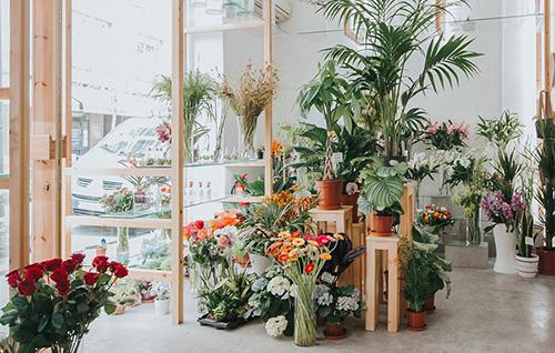 合肥花店装修要点,网红花店这样设计,让你的梦想照进现实图片