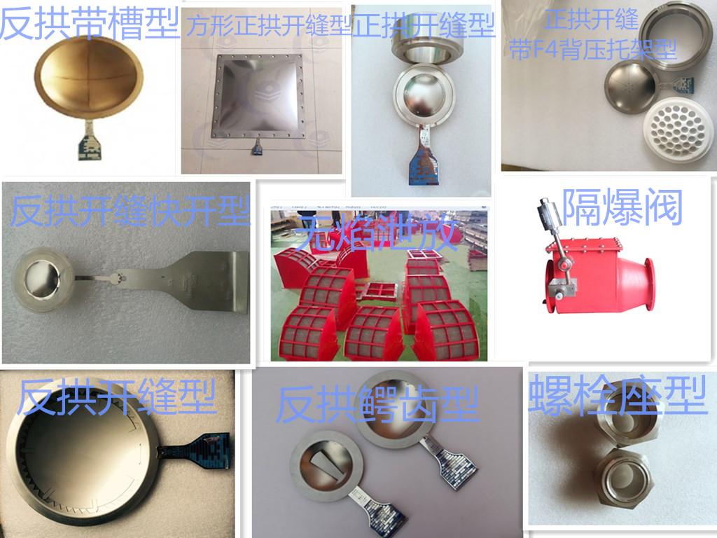 专业生产各种规格泄膜阀/破裂盘/阻火器图片