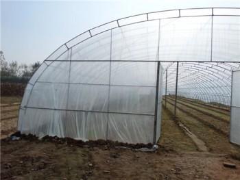 河北日光养殖温室大棚