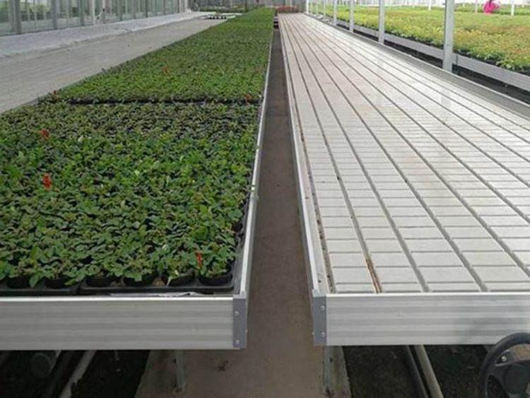 供应临汾温室种植ABS潮汐苗盘使用规格